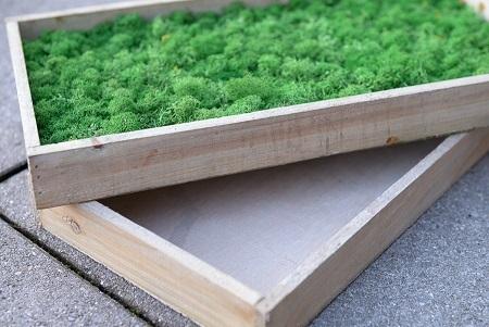 Holzrahmen Zur Herstellung Von Moosbildern