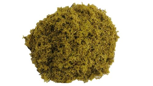 Icelandmoss Moss Flakes Lime-Green