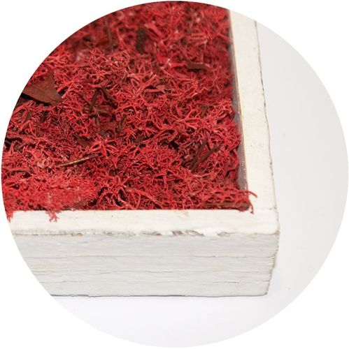 Moss Flakes Cherry-Red