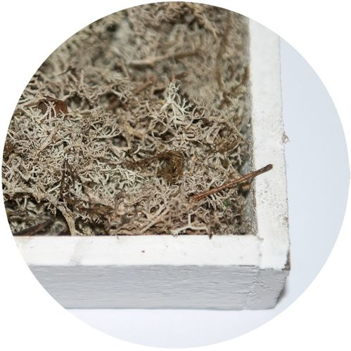 Moss Flakes Natural-White