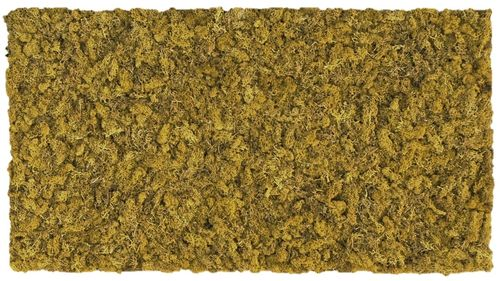 Moss mat lime green 114x57cm as moss picture or moss wall from natural moss Island moss