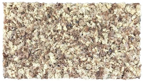 Moss mat natural white 114x57cm as moss picture or moss wall from natural moss Island moss