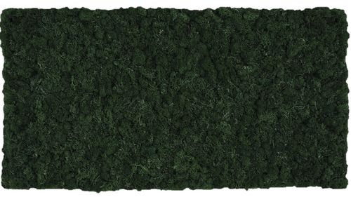 Moss mat dark green 114x57cm as moss picture or moss wall from natural moss Island moss