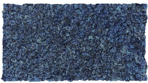 Moss mat navy blue 104x57cm as moss picture or moss wall from natural moss Iceland moss