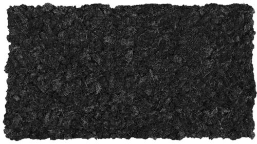 Moss mat carbon black 114x57cm as moss picture or moss wall from natural moss Island moss