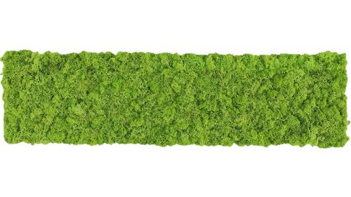 Moss mat grass green 114x28,5cm as moss picture or moss wall from natural moss Island moss